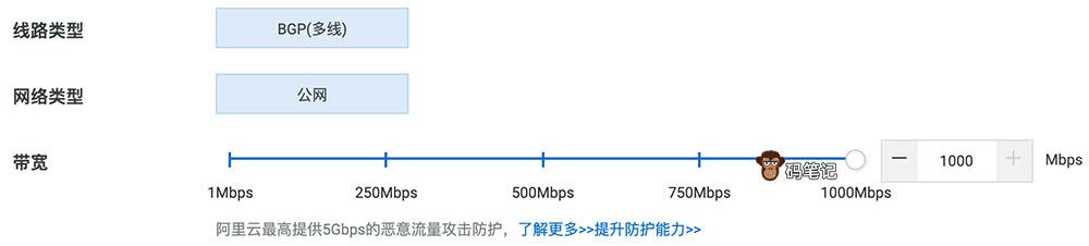 阿里云弹性公网IP带宽最大值1000M